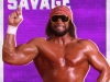 WWE2K18_ROSTER_Randy Savage